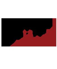 darkzone edizioni logo